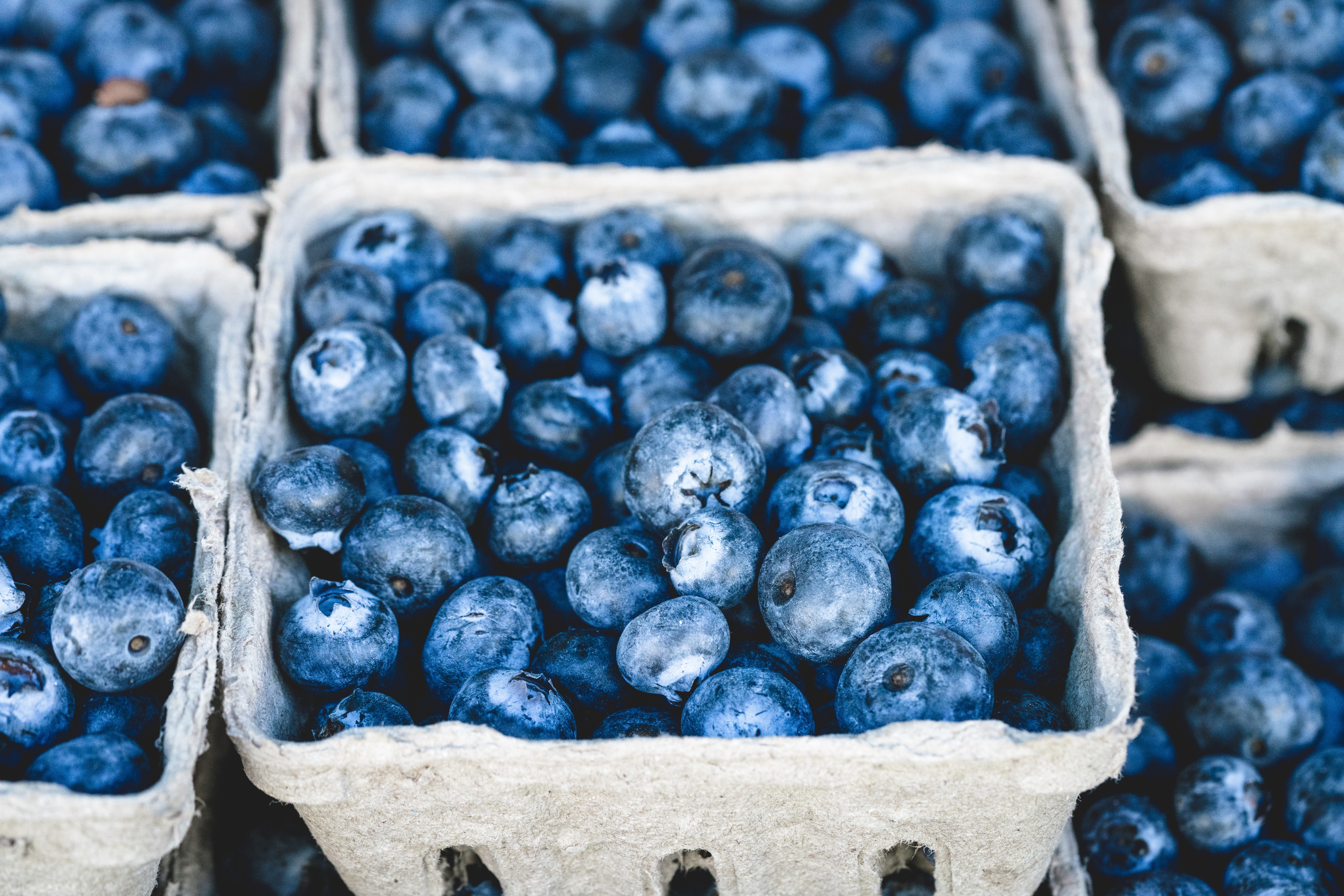 blueberries-brain-health